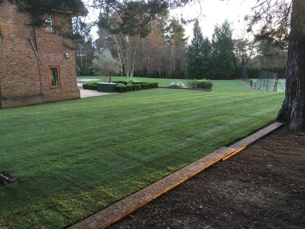 Landscaping - Grading & Turfing
