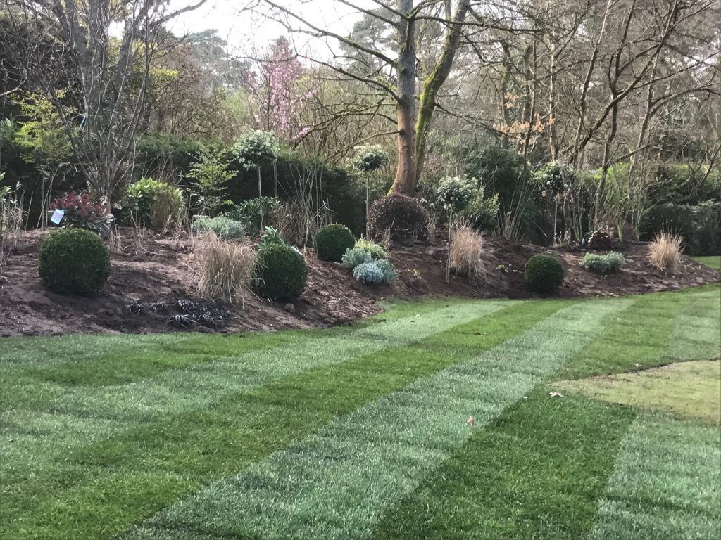Landscaping - Grading, Tufing, Planting