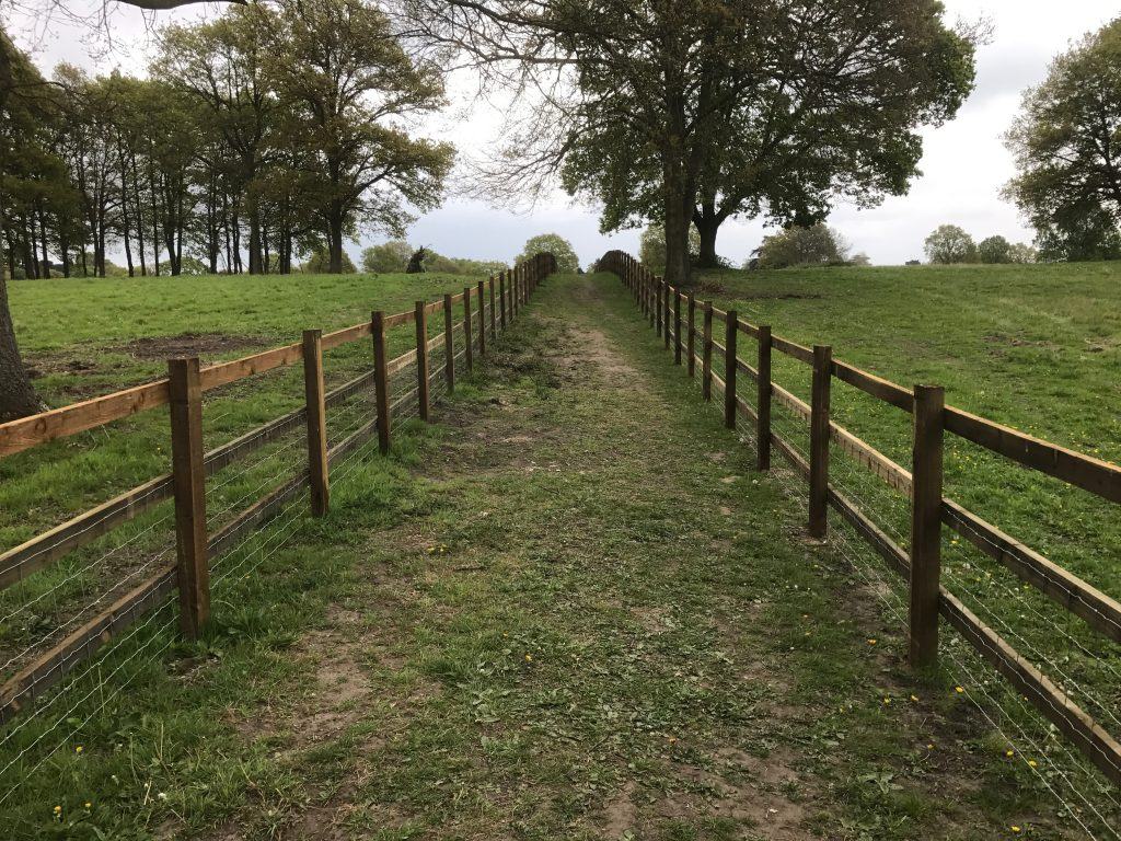 Landscaping - Post & Rail Fencing