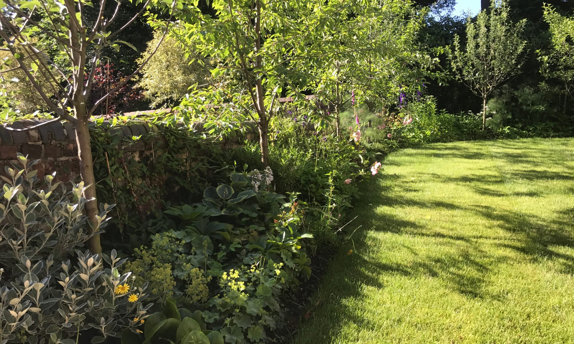 Landscaping - Fruit Tree Planting, Border Planting