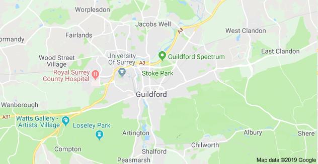 landscape gardeners Guildford